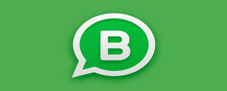 Logo do App WhatsApp Business sob fundo verde
